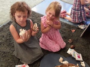 Interacting with shells and other marine artifacts Deception Bay Child Care